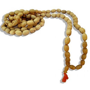 Mridanga Shaped Tulsi Japa Beads